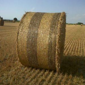 filet agricole