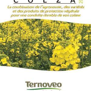couv web guide colza 2019 300x300 - Guide COLZA