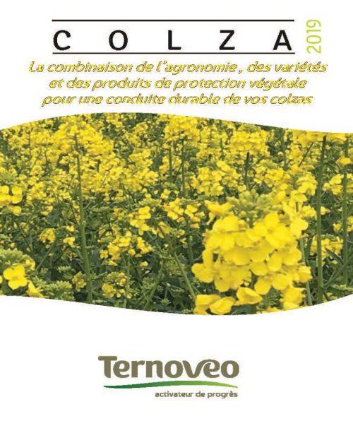 couv web guide colza 2019 500x613 - Guide COLZA