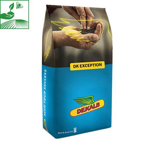 semences colza dk exception 500x500 - DK EXCEPTION