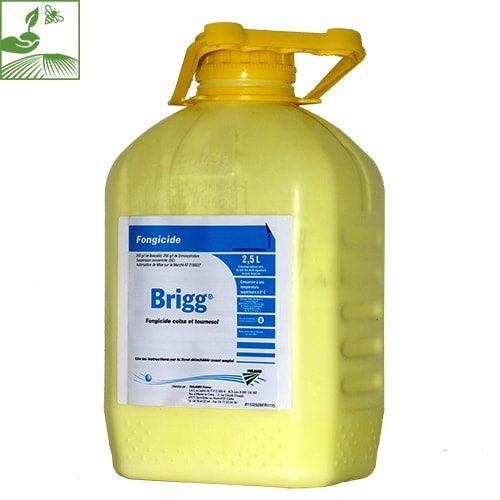 fongicide brigg philagro 500x500 - BRIGG