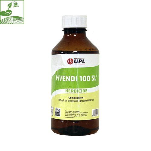 VIVENDI 100 SL