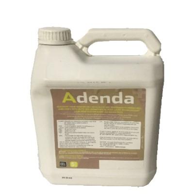 ADENDA