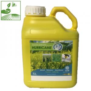 hurricane 300x300 - HURRICANE