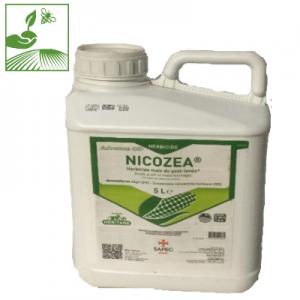 nicozea 300x300 - NICOZEA