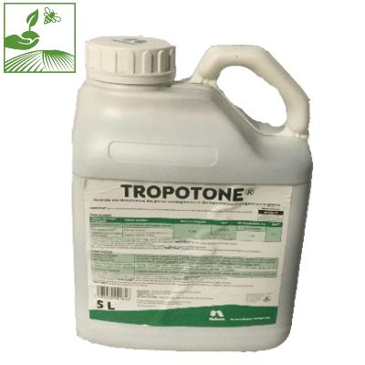 tropotone - TROPOTONE