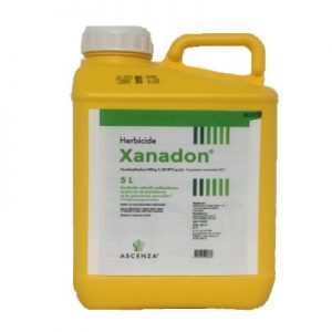XANADON