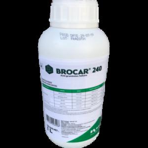 BROCAR 240