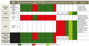 Traitement de semence 300x154 - CHEVIGNON